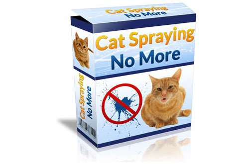 Cat Spraying No More Note